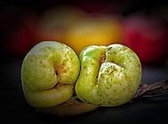 Apfel HM