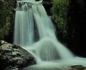 Triberger Wasserfälle_2